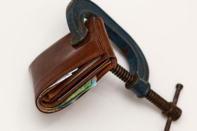 Економічна роль державного фінансового контролю (реферат)