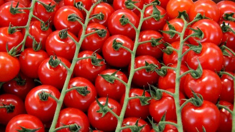 Критерії продовольчої безпеки