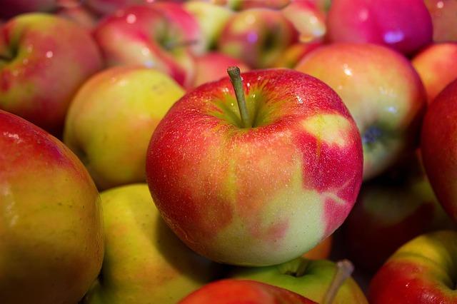 Яблоневый этюд