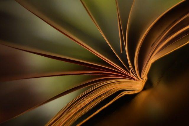 Професійна орієнтація: суть, завдання та основні принципи (реферат)