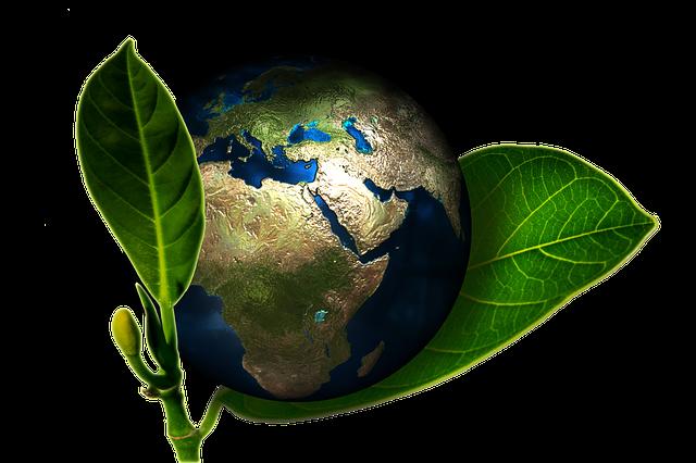 Екологія земноводніх